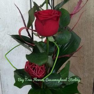 Simple Rose Kiss